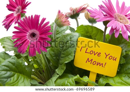Happy Mothers Day with Flowers and Sign with Text.
