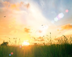 Happy new day concept: Stunning yellow meadow autumn sunrise with bokeh beautiful light background