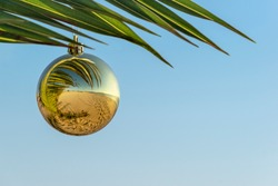 Happy New Year and Merry Christmas on the beach concept.Golden Christmas ball on palm branch against blue sky and reflection of beach in it. Christmas holidays in warm countries. Copy space