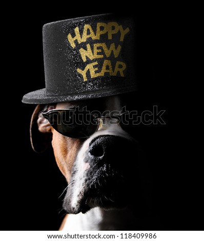 Happy New Year Boxer Dog wearing hat and sunglasses