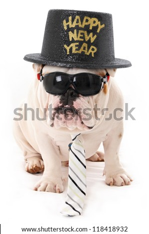 Happy New Year Bulldog wearing Sunglasses, hat and Tie - stock photo