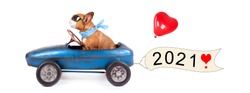 happy new year 2021, cute dog in pedal car with greetings for new year