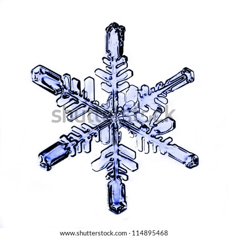 happy new year, natural Christmas snowflakes, Christmas stars, isolated background for design