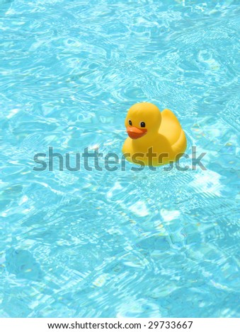 Happy rubber duck in the pool