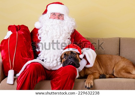 happy Santa Claus with dog in the interior