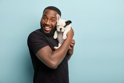 Happy satisfied smiling dark skinned man carries small pet of french bulldog breed, spend leisure time together, expresses positive emotions during photoshoot with dog, isolated over blue background