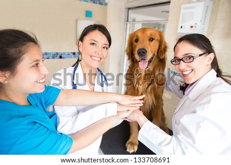 Happy team of doctors at the vet with hands together