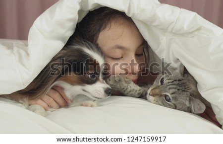 Happy teen girl communicates with dog Papillon and Thai cat in the bed #1247159917