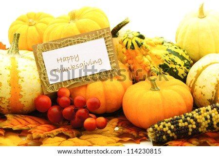 Happy Thanksgiving card among a group of pumpkins and gourds