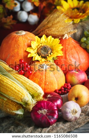 Happy Thanksgiving Day background, wooden table decorated with Pumpkins, Maize, fruits and autumn leaves. Harvest festival. Selective focus. Vertical. #1165086508