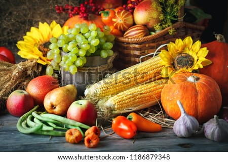 Happy Thanksgiving Day background, wooden table decorated with Pumpkins, Maize, fruits and autumn leaves. Harvest festival. Selective focus. Horizontal. #1186879348