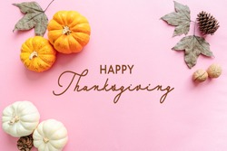 Happy Thanksgiving Day with pumpkin, maple leaf and nut