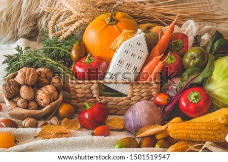 Happy Thanksgiving. Harvest, Autumn. Still life with Thanksgiving concept. Panoramic collection of fresh healthy fruits and vegetables.