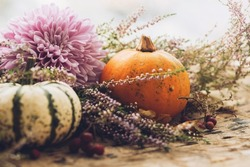 Happy Thanksgiving. Stylish pumpkins, purple dahlias flowers, heather on rustic old wooden background in light. Fall harvest rural composition space for text. Atmospheric autumn image