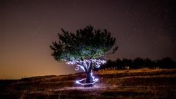 Happy tree on the middle of field while light painting
