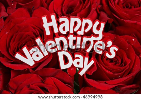 stock photo : Happy Valentines Day sign on red roses