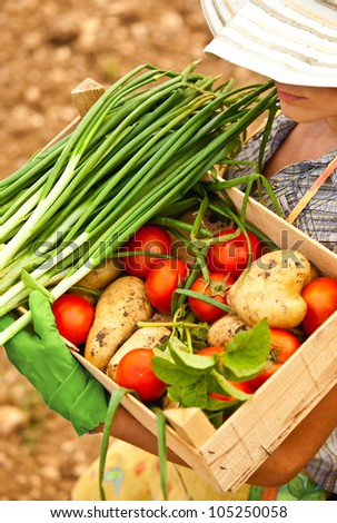 Happy woman gardener working on the field, young female carrying chest of vegetables, adult girl growing organic green food, summer garden, rural leisure outdoor, lady farmer, tomato harvest season