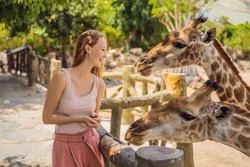 Happy woman watching and feeding giraffe in zoo. She having fun with animals safari park on warm summer day