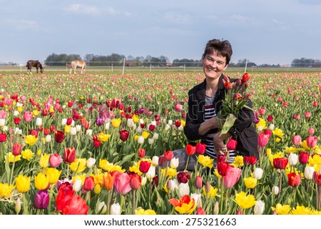 Happy woman with bunch of tulips in a big colorful tulip field
