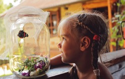 Happy 5-6 years old girl catching a butterfly in the village garden at summer, happy summertime, young bug-hunter, lifestyle outdoor