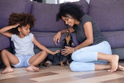 Happy young African American mom and small daughter play with home pet sitting in living room, excited nanny or mother and kid laugh having fun with dackel dog. Family animal companion concept