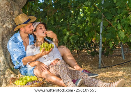 Happy young farmers enjoy a work break sitting at the shade of a tree at the vineyard, eating grapes, kissing, feeding, and teasing one another.