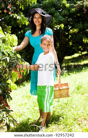 happy young mother and son picking litchis in litchi orchard