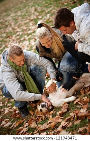Happy young people stroking dog in park at autumn.
