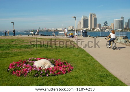 Harbor & park scene; San Diego, California