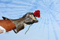 Hard but hearty  -  iron knight's hand with red rose before blue sky with lighteffect