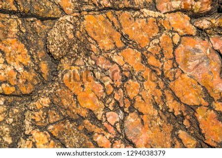 Hard rock close up detail view texture background #1294038379