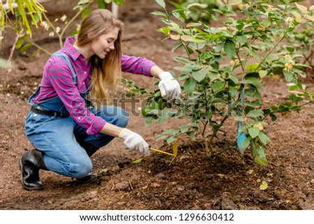 hardworking girl hoeing weeds in the garden. weeding grass. ful length side view photo. working day,