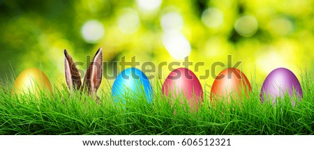 Hare ears and Easter eggs hide in a grass.