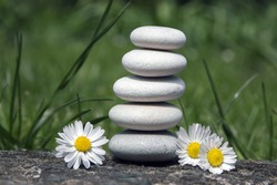 Harmony and balance, simple pebbles tower and daisy flowers in bloom in the grass, simplicity, five stones