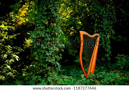 Harp.Paraguayan harp.harp in forest #1187277646