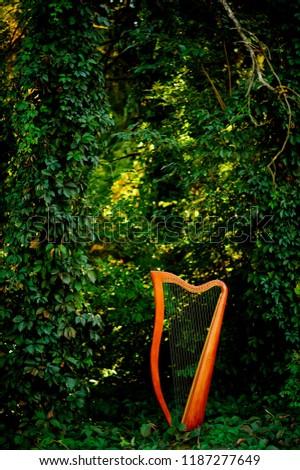 Harp.Paraguayan harp.harp in forest #1187277649