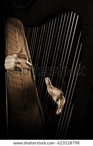 Harp player. Hands playing Irish harp music instrument close up #623528798