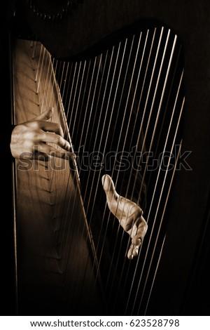 Harp player. Hands playing Irish harp music instrument close up #623528798