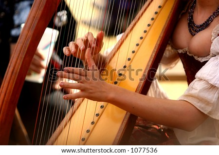 Harpist entertaining