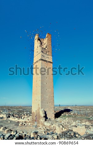 harran university (Old astronomy tower)