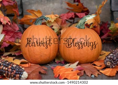 Harvest Blessings On Pumpkins for Fall