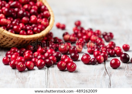 Shutterstock Harvest fresh red cranberries in wicker basket, selective focus. Autumn concept