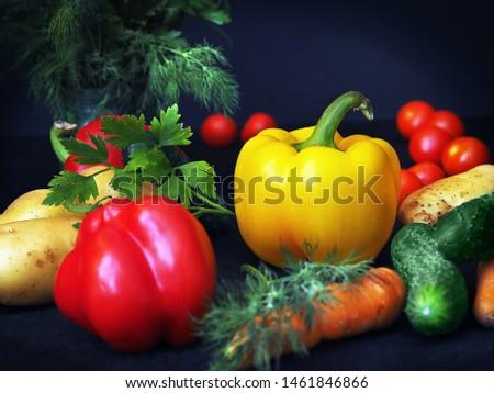 Harvest of fresh vegetables. Vegetables on a black background. Vegetables and herbs for cooking