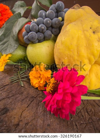 harvest of grapes quinces pears and apples with autumn flowers #326190167