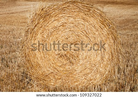Harvest of straw stacked in spiral - stock photo