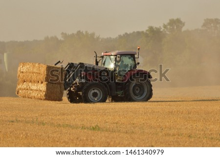 Harvested bales of straw after harvest of grain