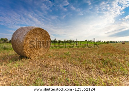 Harvested Field with Straw Bale