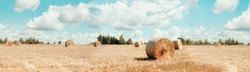 Harvested field with straw bales. Agriculture background with copy space. Summer and autumn harvest concept. Banner.