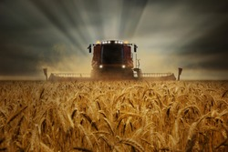 Harvester machine drives on a field