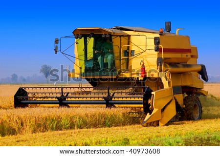 Harvester tractor working a rice field